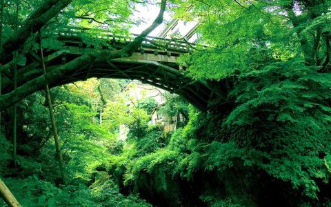 Yamanaka Onsen & Kakusenkei Gorge