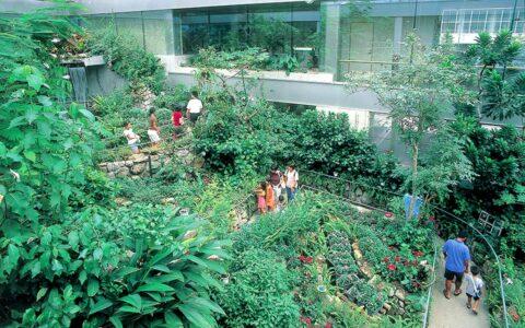 Ishikawa Insect Museum