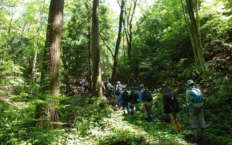 観音山ハイキングコース