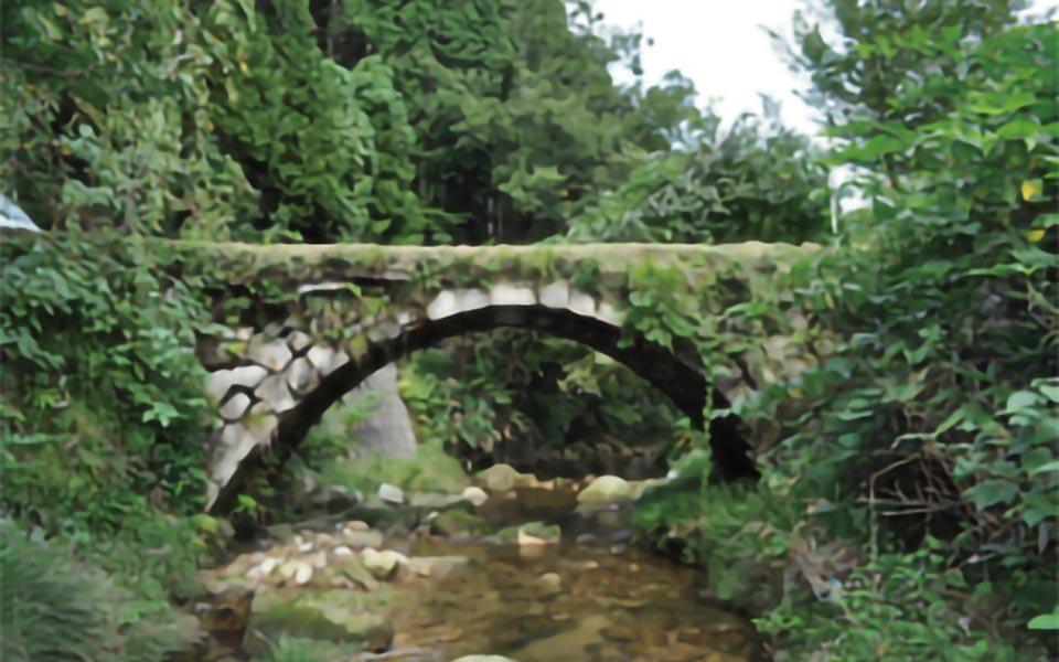 里山自然学校こまつ滝ヶ原